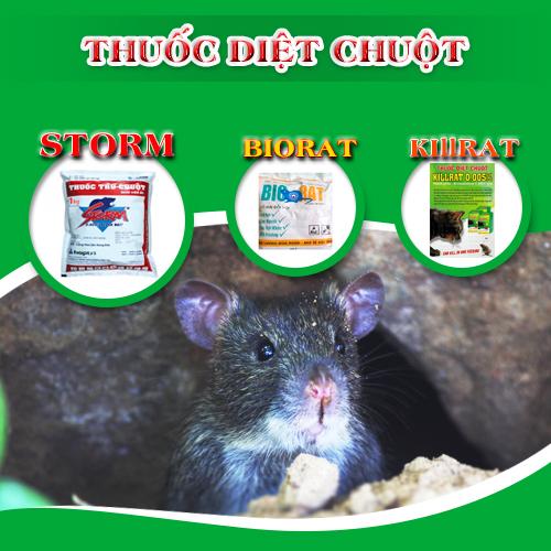 Cách phân biệt Biorat chính hãng